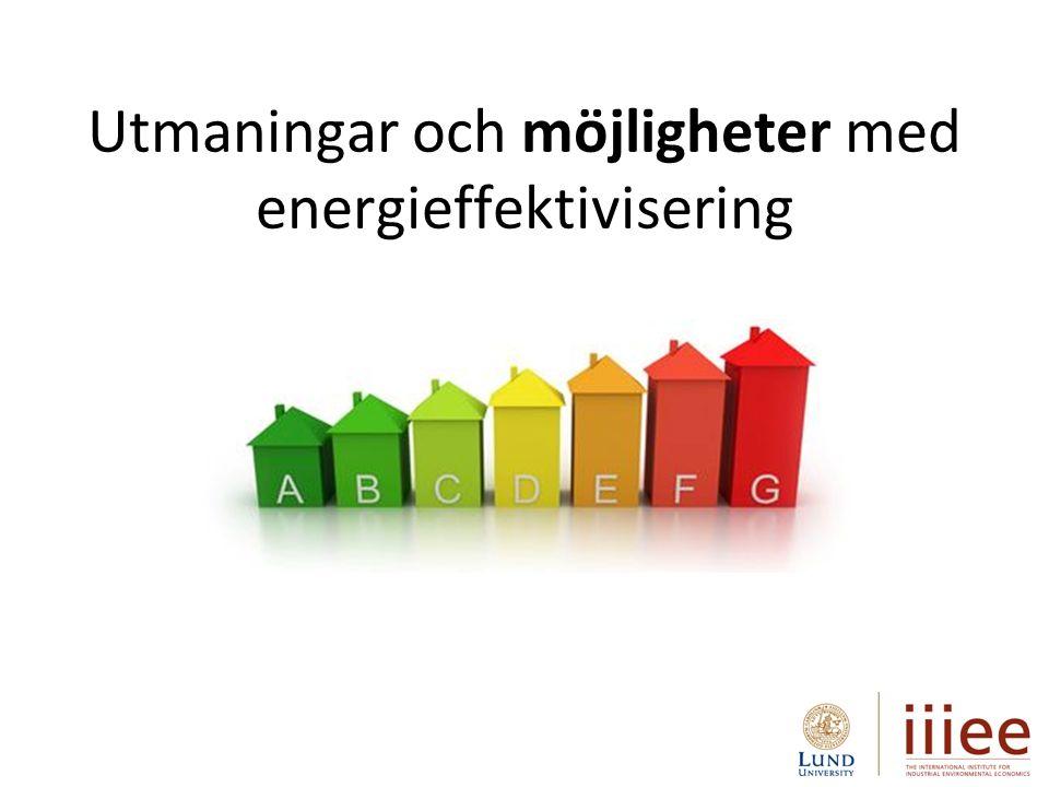 Utmaningar och möjligheter med energieffektivisering