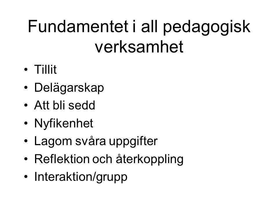 Fundamentet i all pedagogisk verksamhet Tillit Delägarskap Att bli sedd Nyfikenhet Lagom svåra uppgifter Reflektion och återkoppling Interaktion/grupp