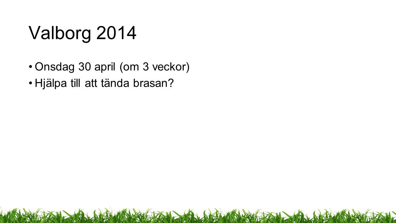 Valborg 2014 Onsdag 30 april (om 3 veckor) Hjälpa till att tända brasan