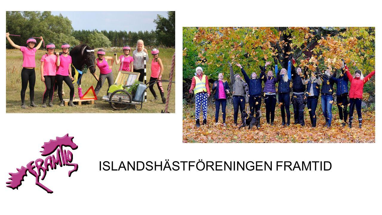 Svenska islandshästförbundet SIF grundades 1975.