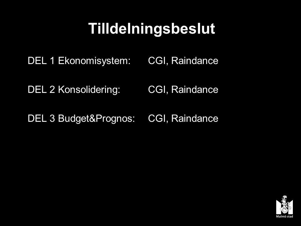 Tilldelningsbeslut DEL 1 Ekonomisystem:CGI, Raindance DEL 2 Konsolidering:CGI, Raindance DEL 3 Budget&Prognos: CGI, Raindance