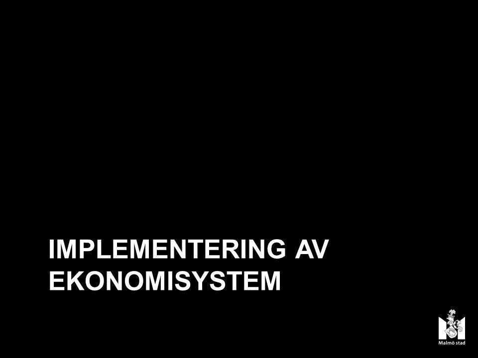 IMPLEMENTERING AV EKONOMISYSTEM