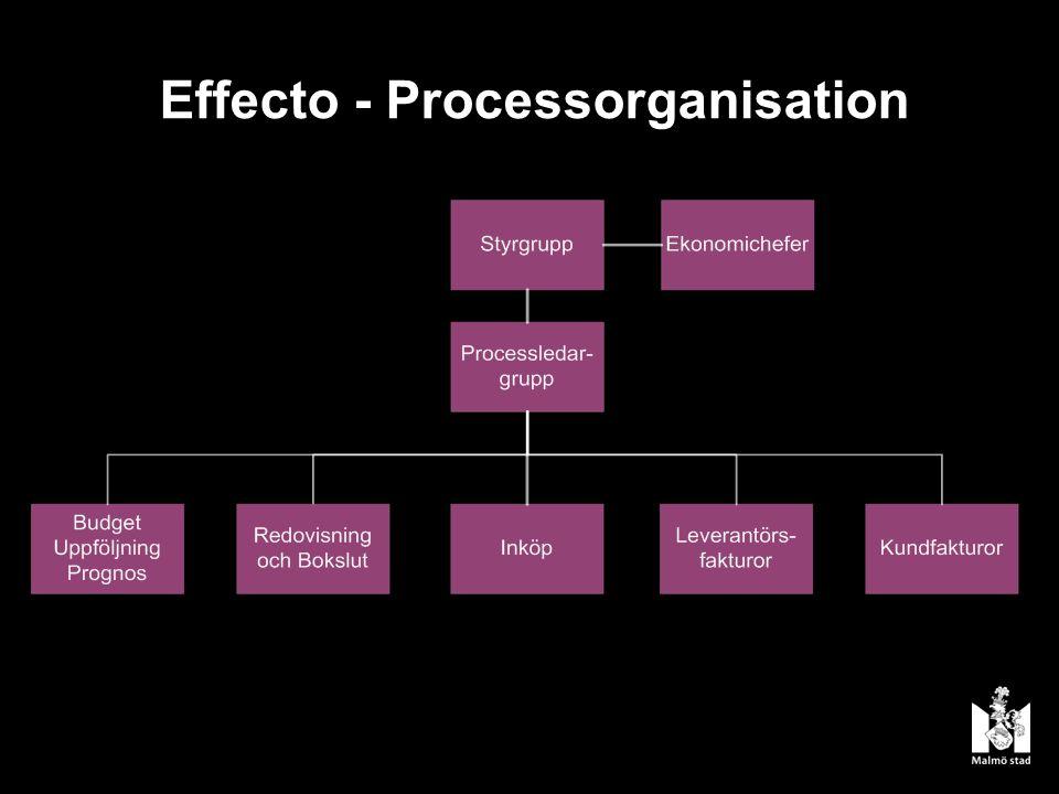 Effecto - Processorganisation