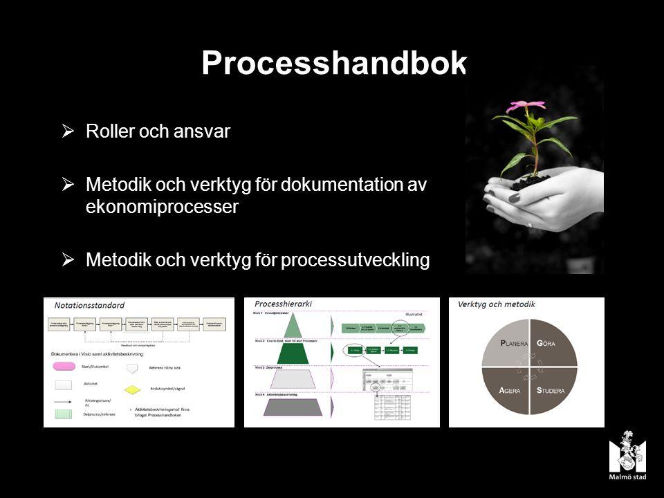 Processhandbok  Roller och ansvar  Metodik och verktyg för dokumentation av ekonomiprocesser  Metodik och verktyg för processutveckling