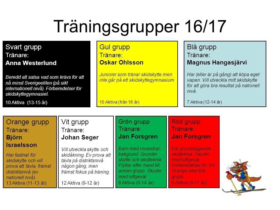 Träningsgrupper 16/17 Svart grupp Tränare: Beredd att satsa vad som krävs för att nå minst Sverigeeliten (på sikt internationell nivå).