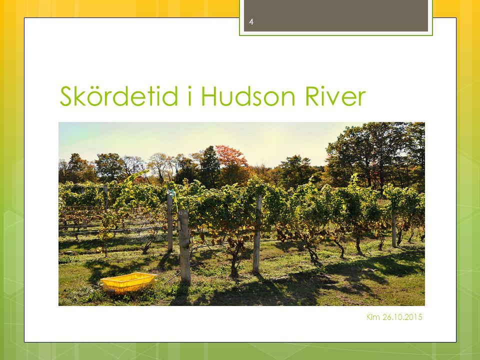 Skördetid i Hudson River Kim 26.10.2015 4