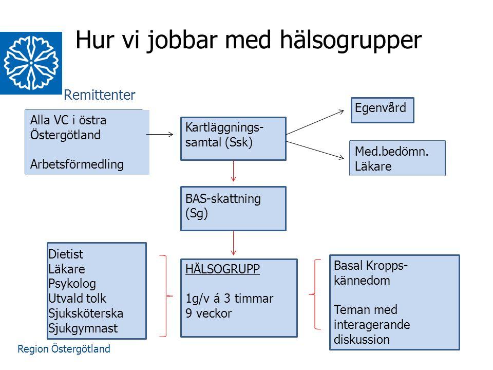Region Östergötland Hur vi jobbar med hälsogrupper Remittenter Alla VC i östra Östergötland Arbetsförmedling Kartläggnings- samtal (Ssk) BAS-skattning (Sg) HÄLSOGRUPP 1g/v á 3 timmar 9 veckor Egenvård Med.bedömn.