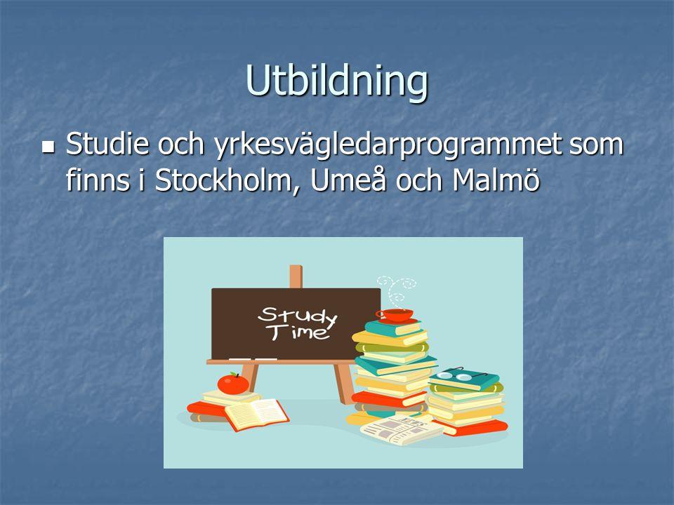 Utbildning Studie och yrkesvägledarprogrammet som finns i Stockholm, Umeå och Malmö Studie och yrkesvägledarprogrammet som finns i Stockholm, Umeå och Malmö