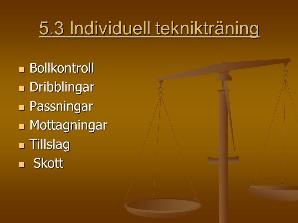 5.3 Individuell teknikträning Bollkontroll Bollkontroll Dribblingar Dribblingar Passningar Passningar Mottagningar Mottagningar Tillslag Tillslag Skott Skott