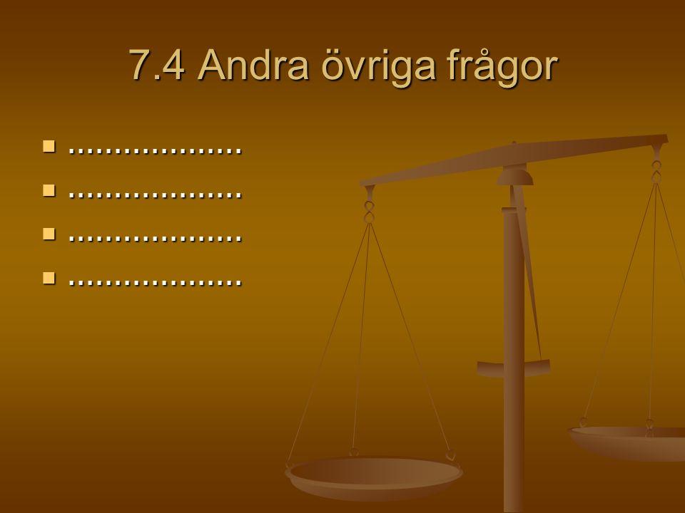 7.4 Andra övriga frågor......................................