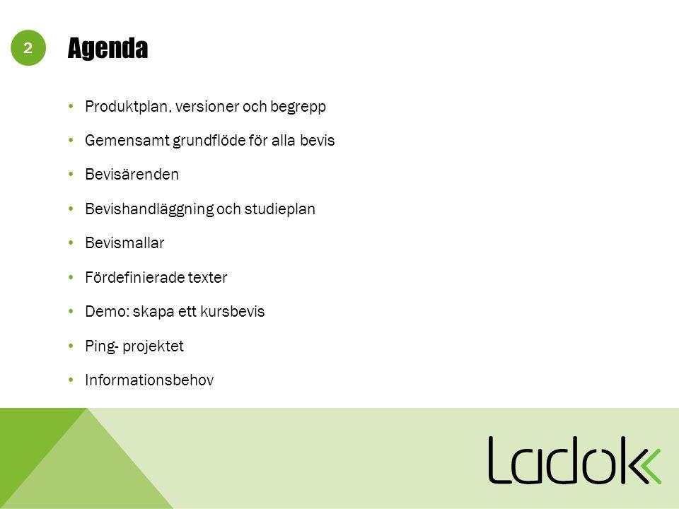 2 Agenda Produktplan, versioner och begrepp Gemensamt grundflöde för alla bevis Bevisärenden Bevishandläggning och studieplan Bevismallar Fördefinierade texter Demo: skapa ett kursbevis Ping- projektet Informationsbehov