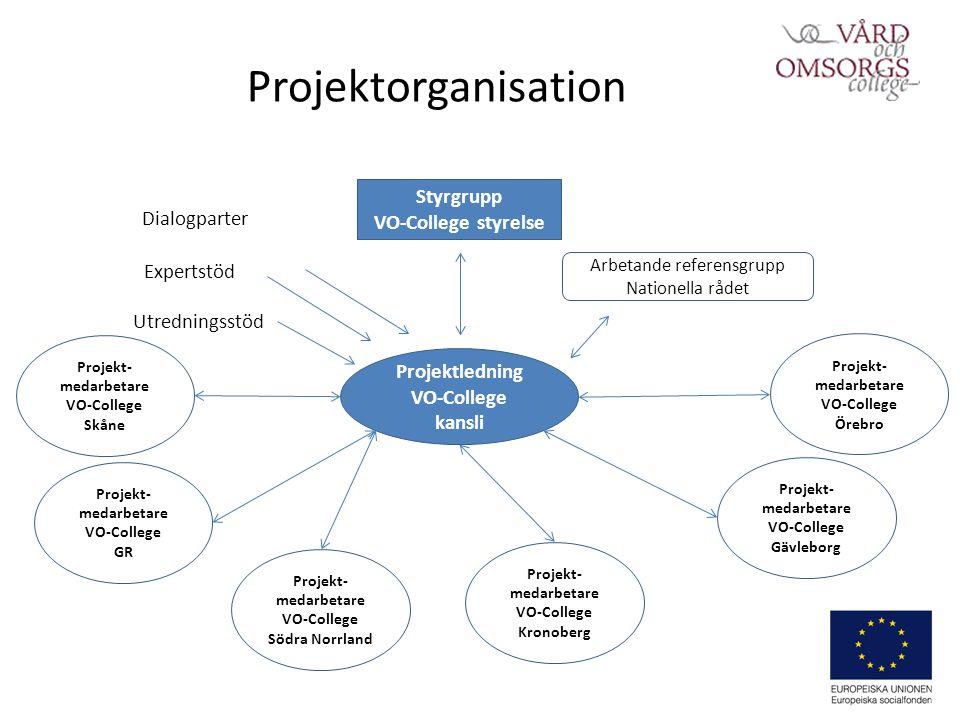 Rekryteringsvägar och metoder behöver utvecklas VO-College nationellt genom kansliet: Sammanställa befintlig kunskap om obalansen mellan könen i branschen Regionala VO- College: Analysera tidigare genomfört arbete i regionen och föreslå insatser för att bryta könssegregerad arbetsmarknad (Örebro).