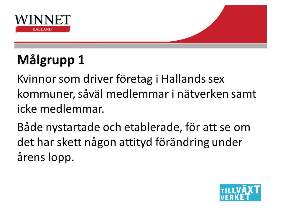 Målgrupp 2 De aktörer som ingår i vårt strukturpåverkande arbete så som Region Halland, Nyföretagarcentrum, Almi, Näringslivskontoren i kommunerna, Arbetsförmedlingarna m.fl