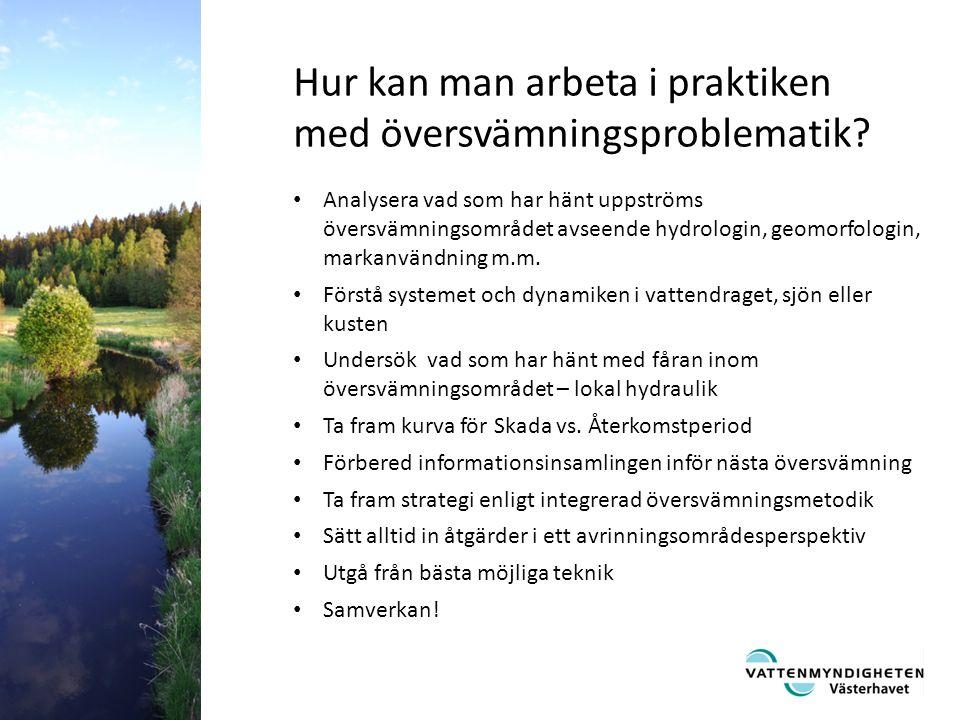 Analysera vad som har hänt uppströms översvämningsområdet avseende hydrologin, geomorfologin, markanvändning m.m.