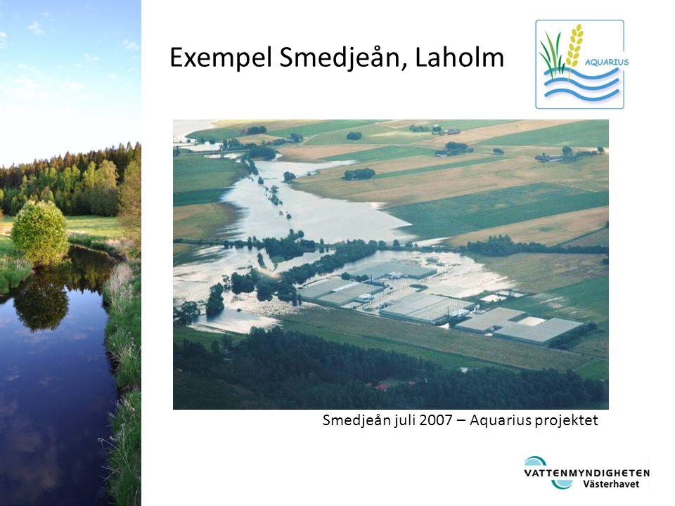Exempel Smedjeån, Laholm Smedjeån juli 2007 – Aquarius projektet