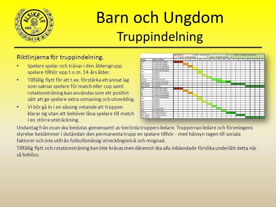 Barn och Ungdom Truppindelning Riktlinjerna för truppindelning.