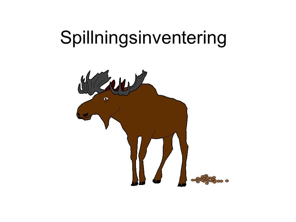 Spillningsinventering