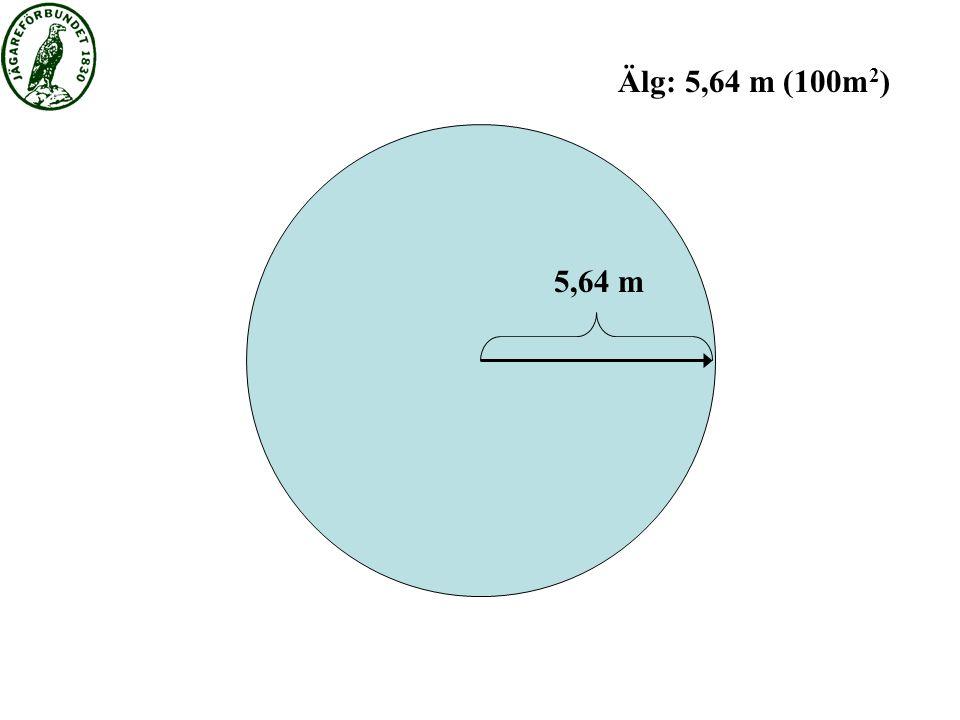 5,64 m Älg: 5,64 m (100m 2 )