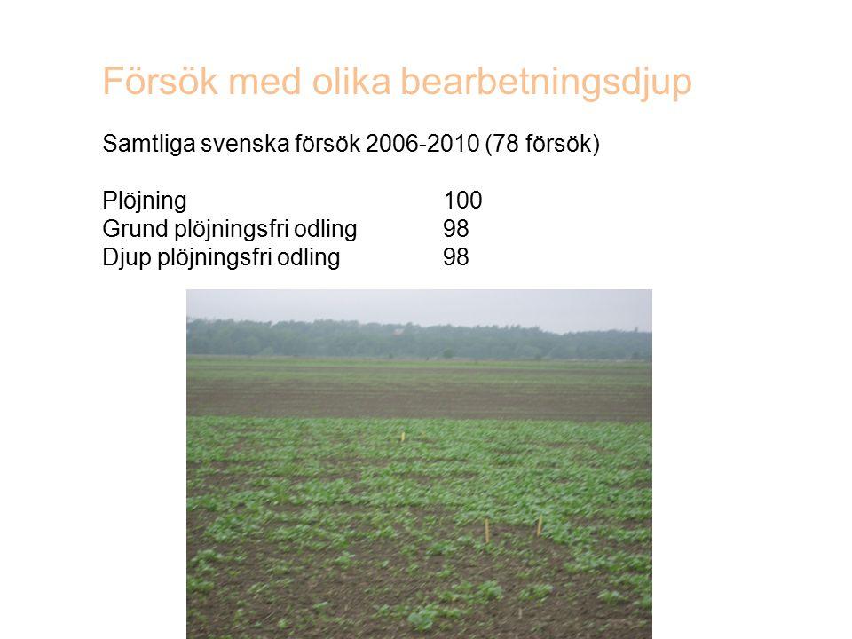 Försök med olika bearbetningsdjup Samtliga svenska försök 2006-2010 (78 försök) Plöjning100 Grund plöjningsfri odling98 Djup plöjningsfri odling98