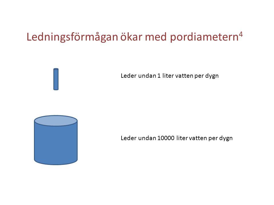 Ledningsförmågan ökar med pordiametern 4 Leder undan 10000 liter vatten per dygn Leder undan 1 liter vatten per dygn