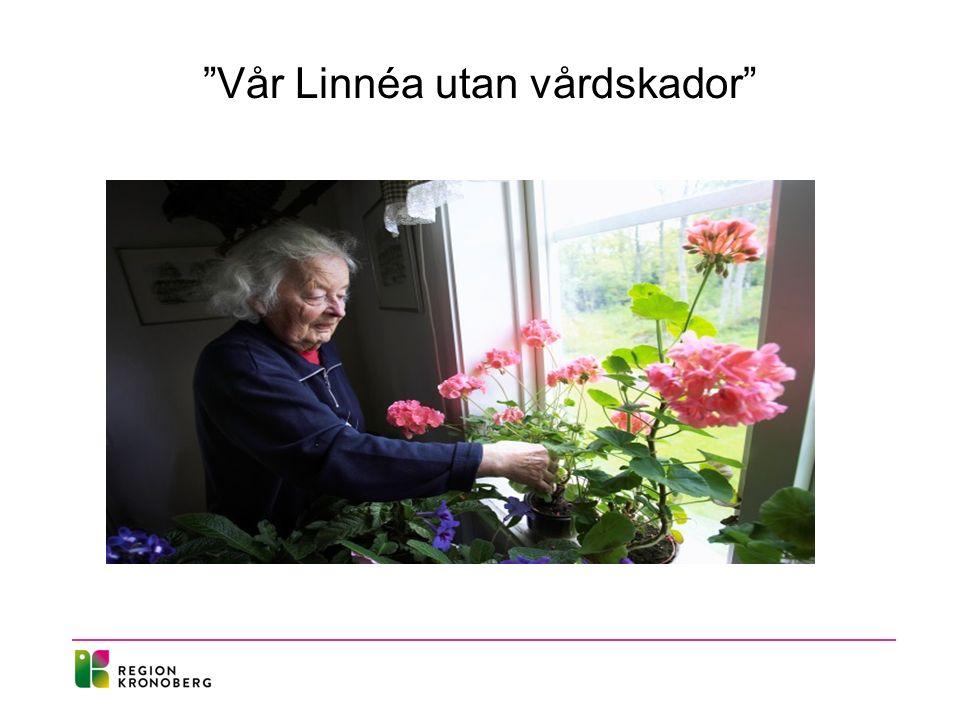 Vår Linnéa utan vårdskador