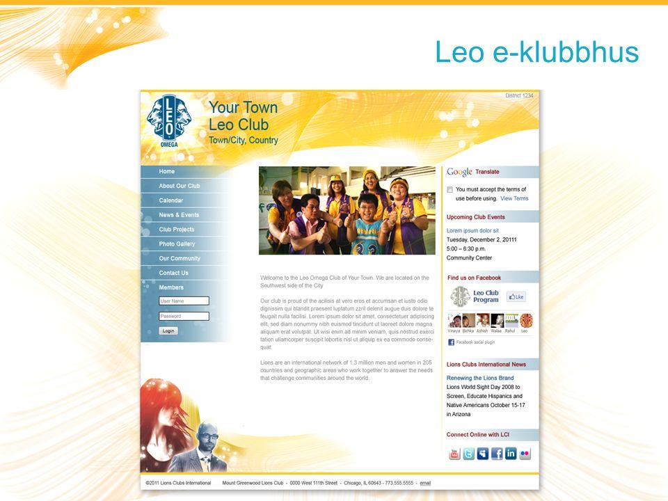 Leo e-klubbhus Fokus och verksamhet