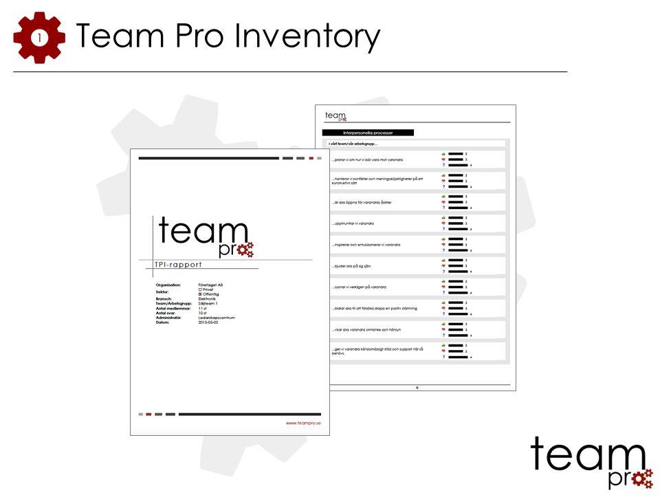 Team Pro Inventory