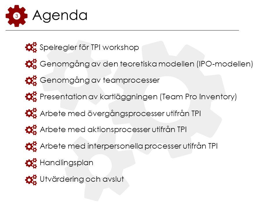Agenda Spelregler för TPI workshop Genomgång av den teoretiska modellen (IPO-modellen) Genomgång av teamprocesser Presentation av kartläggningen (Team Pro Inventory) Arbete med övergångsprocesser utifrån TPI Arbete med aktionsprocesser utifrån TPI Arbete med interpersonella processer utifrån TPI Handlingsplan Utvärdering och avslut