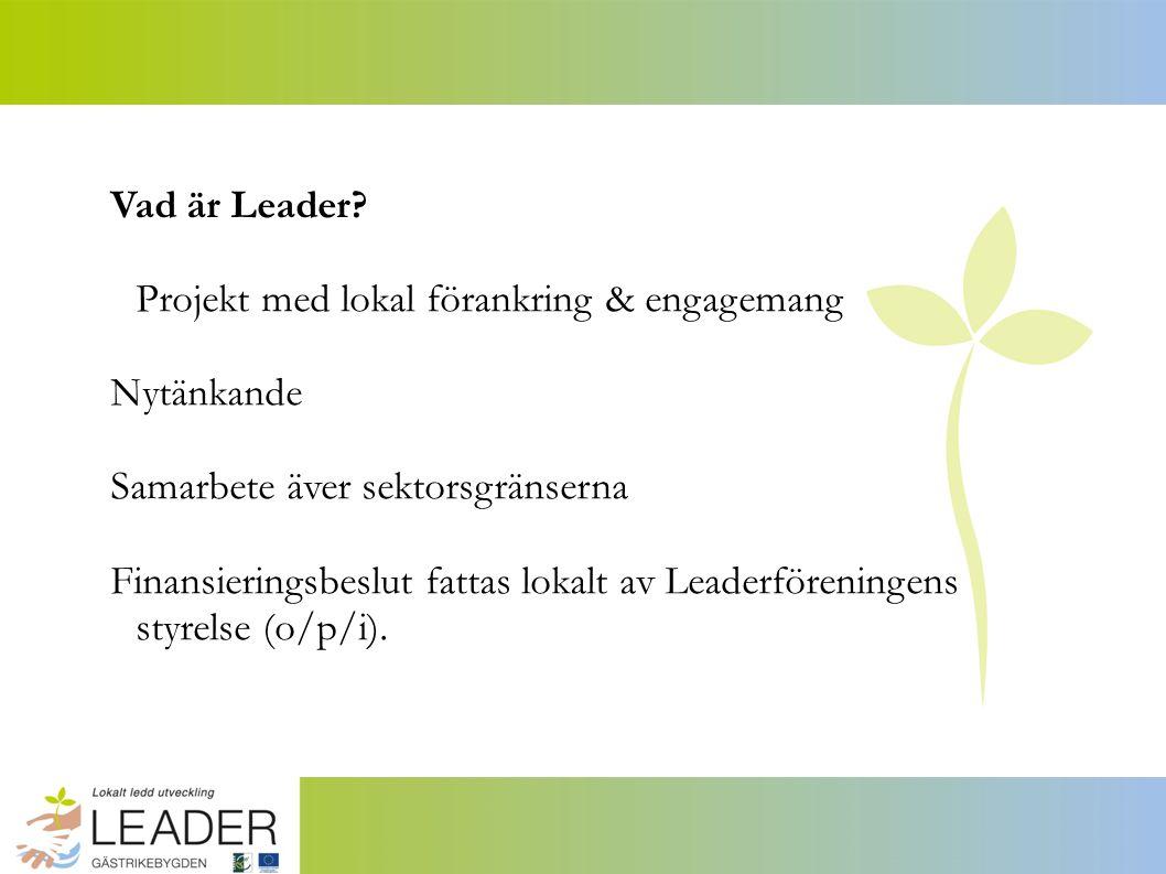 Vad är Leader.