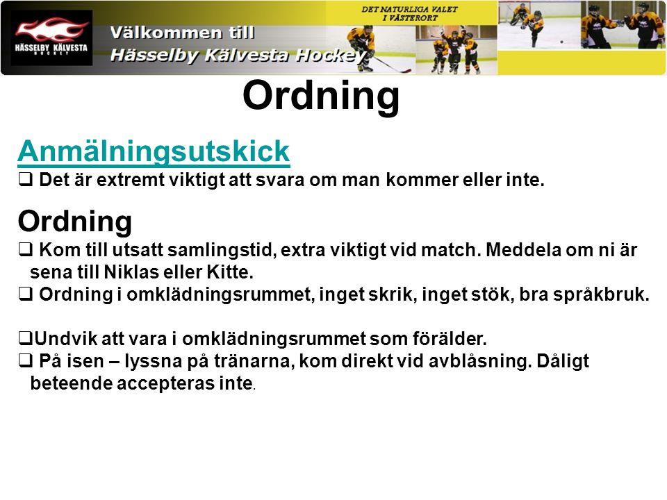 Målsättning 2013-2014 Utveckla alla spelare på och utanför isen Skapa rutiner i laget Alla skall känna samhörighet Ha kul!