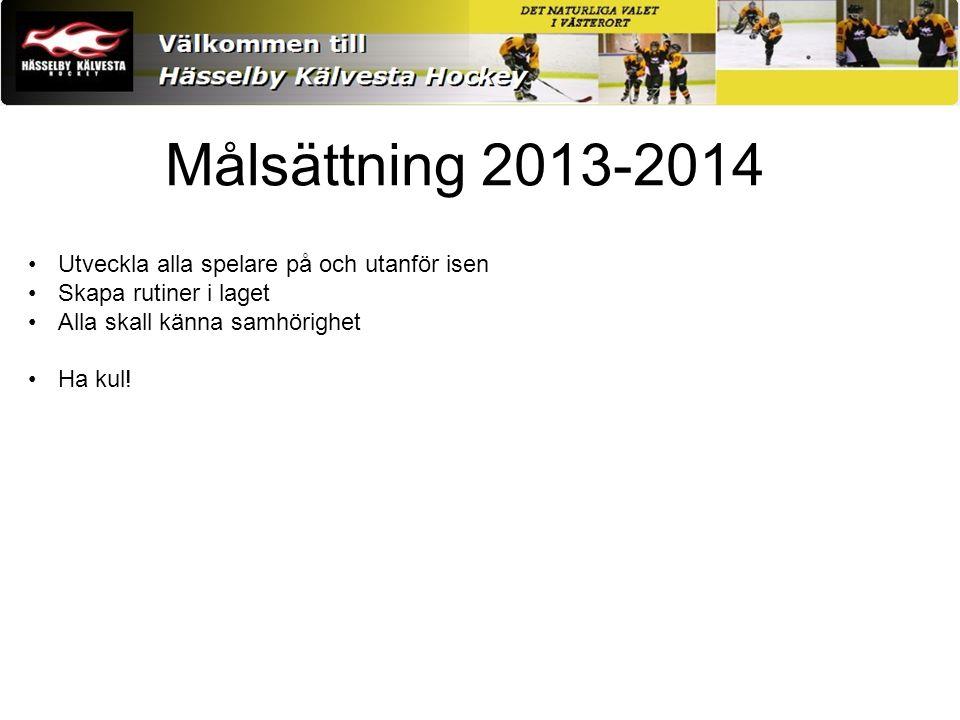 Träningar Nivå och åldersanpassad träning Fokus på skridskoåkning Många barn har flera idrotter Samarbete med Team 2003 och 2005 Målvakter Material (ex.