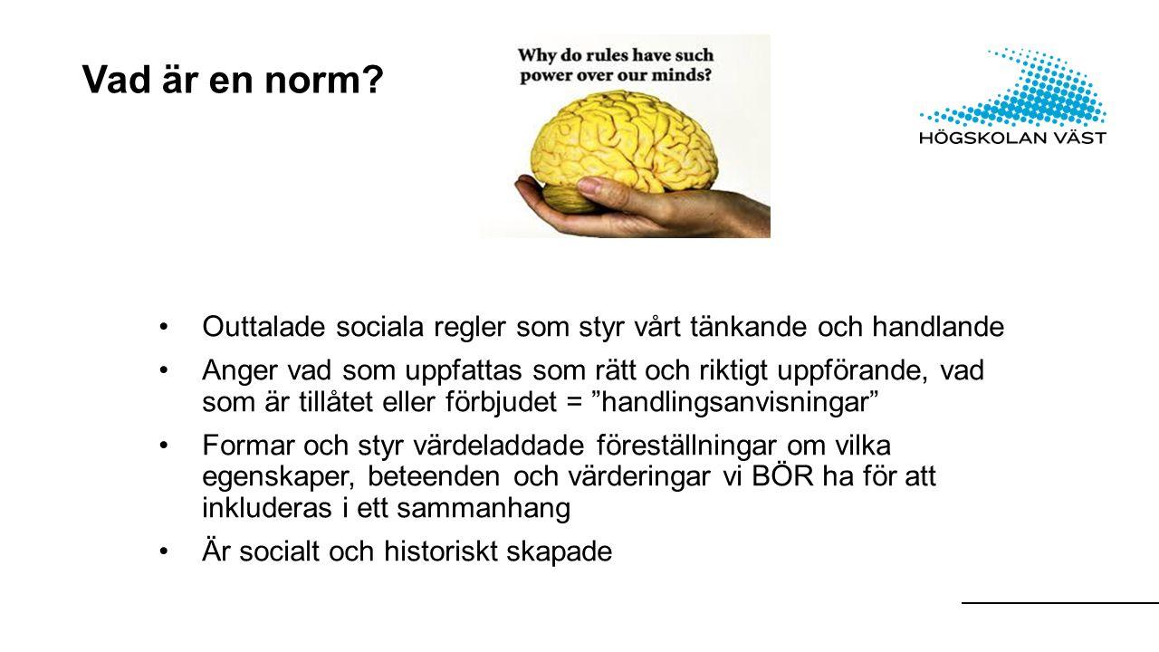 Vad är en norm.
