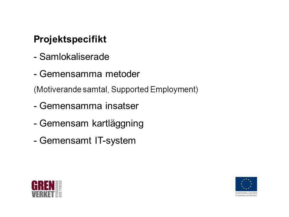 Projektspecifikt - Samlokaliserade - Gemensamma metoder (Motiverande samtal, Supported Employment) - Gemensamma insatser - Gemensam kartläggning - Gemensamt IT-system