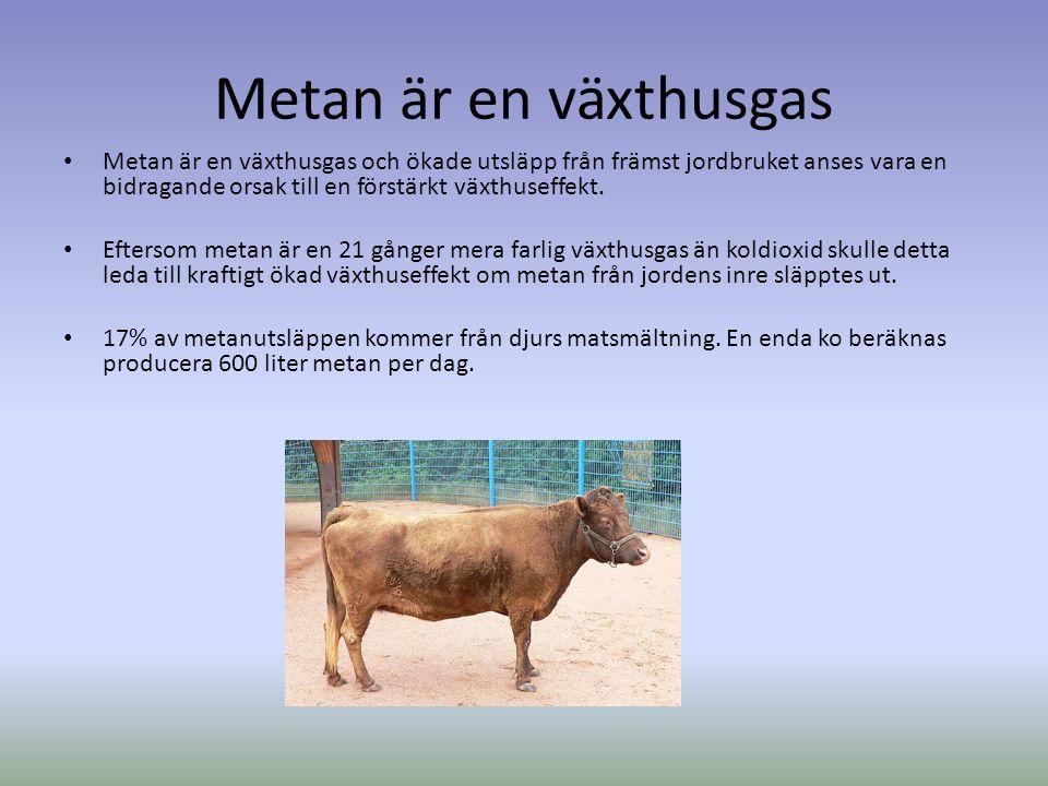 Metan är en växthusgas Metan är en växthusgas och ökade utsläpp från främst jordbruket anses vara en bidragande orsak till en förstärkt växthuseffekt.