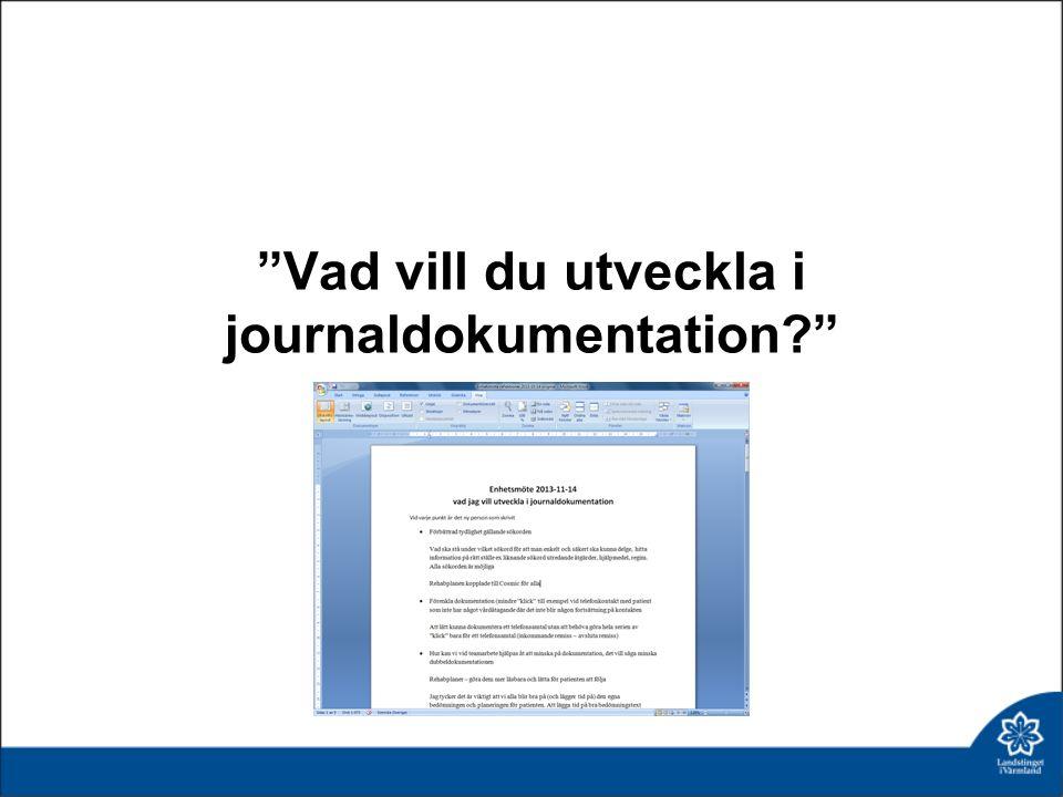 Vad vill du utveckla i journaldokumentation