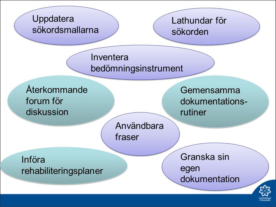 Användbara fraser Uppdatera sökordsmallarna Inventera bedömningsinstrument Återkommande forum för diskussion Införa rehabiliteringsplaner Granska sin