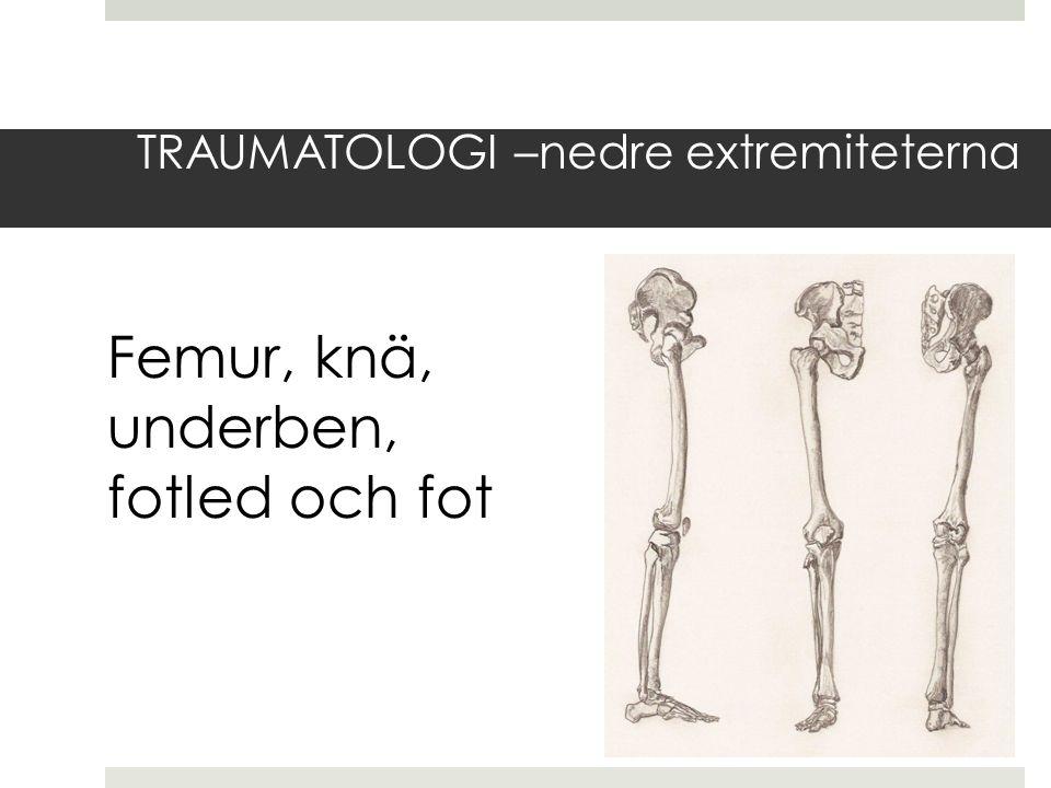 TRAUMATOLOGI –nedre extremiteterna Femur, knä, underben, fotled och fot