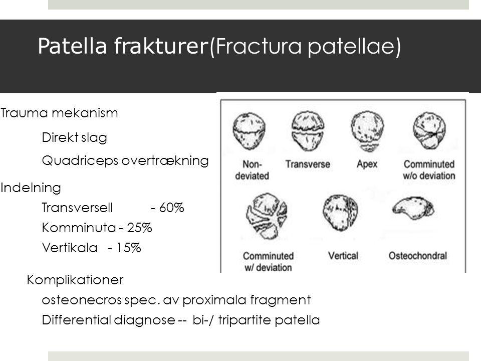 Trauma mekanism Direkt slag Quadriceps overtrækning Indelning Transversell- 60% Komminuta - 25% Vertikala- 15% Komplikationer osteonecros spec.