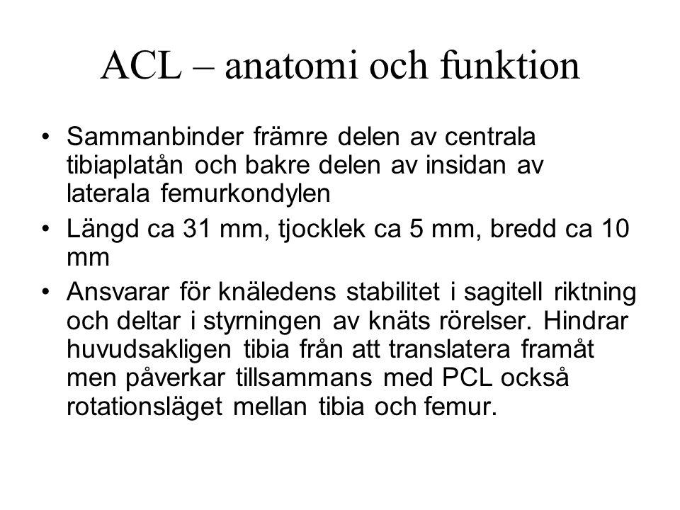 ACL – anatomi och funktion Sammanbinder främre delen av centrala tibiaplatån och bakre delen av insidan av laterala femurkondylen Längd ca 31 mm, tjocklek ca 5 mm, bredd ca 10 mm Ansvarar för knäledens stabilitet i sagitell riktning och deltar i styrningen av knäts rörelser.