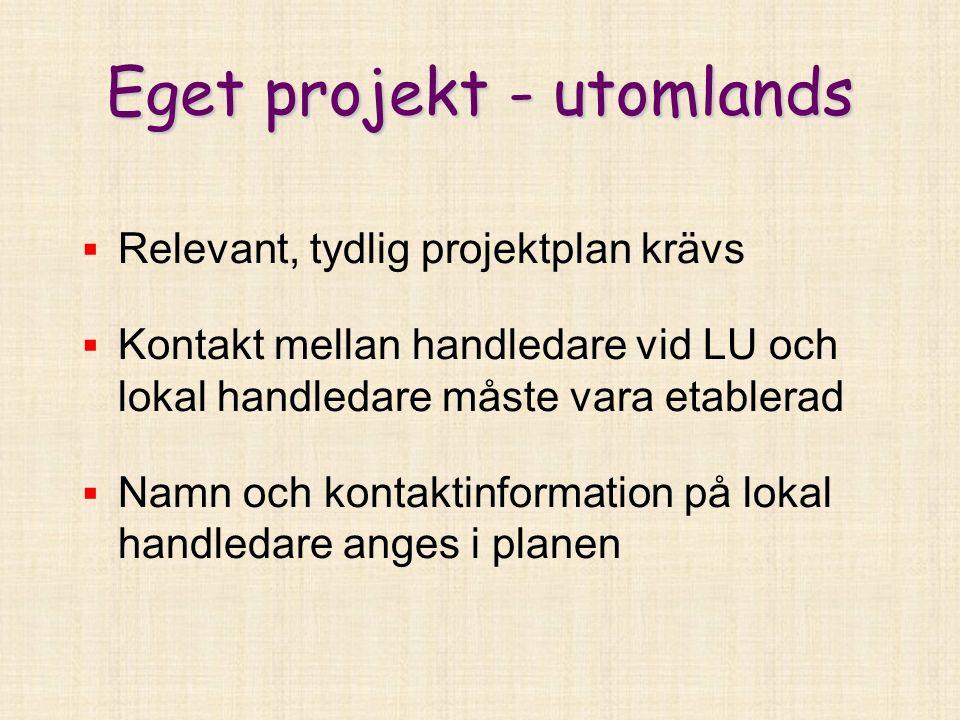 Eget projekt - utomlands  Relevant, tydlig projektplan krävs  Kontakt mellan handledare vid LU och lokal handledare måste vara etablerad  Namn och kontaktinformation på lokal handledare anges i planen