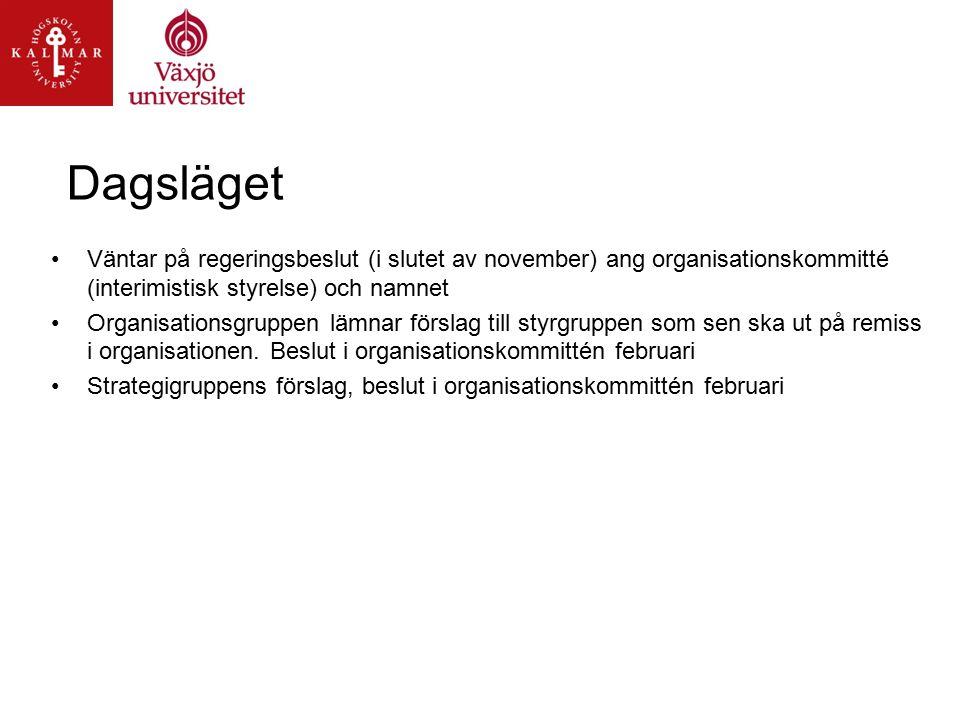 Dagsläget Väntar på regeringsbeslut (i slutet av november) ang organisationskommitté (interimistisk styrelse) och namnet Organisationsgruppen lämnar förslag till styrgruppen som sen ska ut på remiss i organisationen.