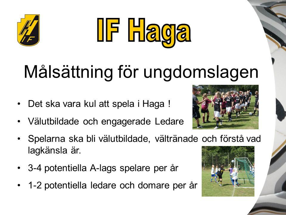 Målsättning för ungdomslagen Det ska vara kul att spela i Haga ! Välutbildade och engagerade Ledare Spelarna ska bli välutbildade, vältränade och förs