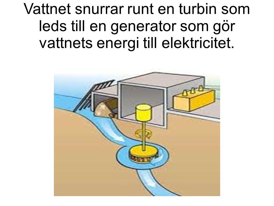 Vattnet snurrar runt en turbin som leds till en generator som gör vattnets energi till elektricitet.