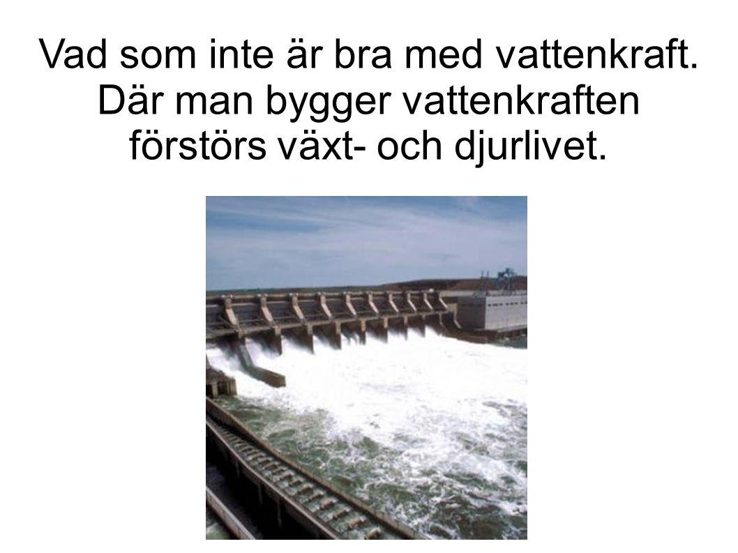 Vad som inte är bra med vattenkraft. Där man bygger vattenkraften förstörs växt- och djurlivet.