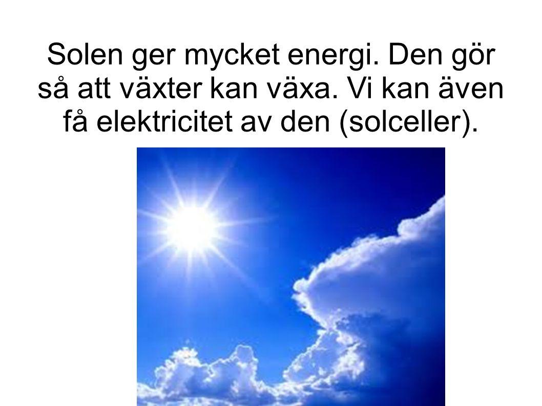 Solen ger mycket energi. Den gör så att växter kan växa.