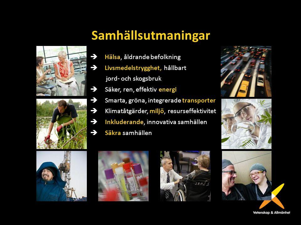 Samhällsutmaningar  Hälsa, åldrande befolkning  Livsmedelstrygghet, hållbart jord- och skogsbruk  Säker, ren, effektiv energi  Smarta, gröna, in