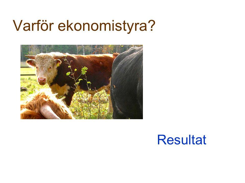 Varför ekonomistyra? Resultat