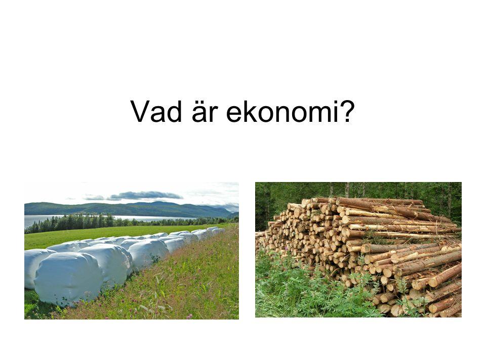 Vad är ekonomi?