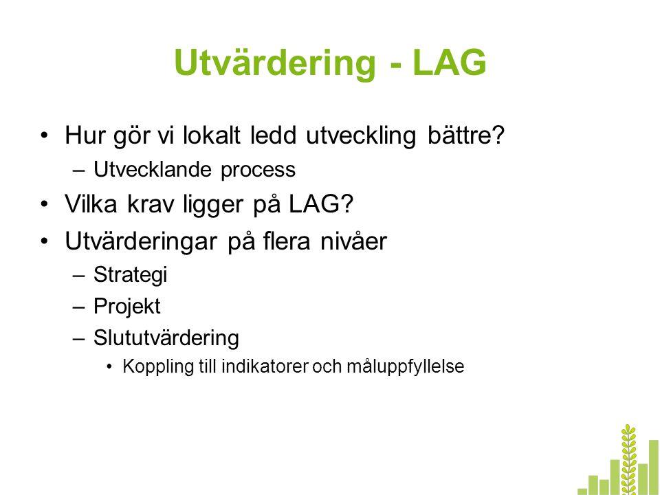 Utvärdering - LAG Hur gör vi lokalt ledd utveckling bättre? –Utvecklande process Vilka krav ligger på LAG? Utvärderingar på flera nivåer –Strategi –Pr
