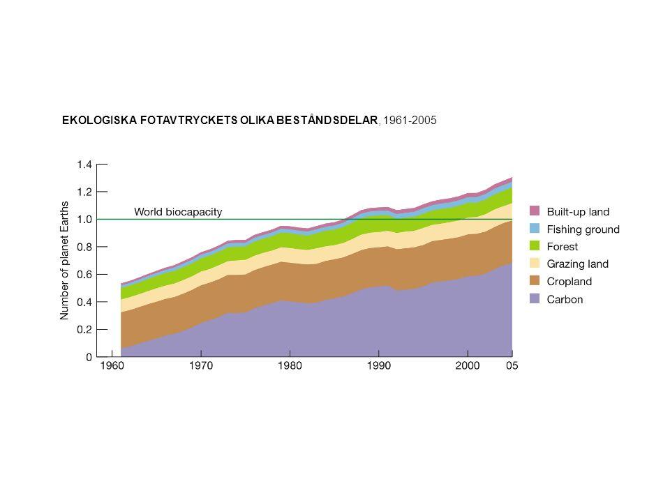 EKOLOGISKA FOTAVTRYCKETS OLIKA BESTÅNDSDELAR, 1961-2005